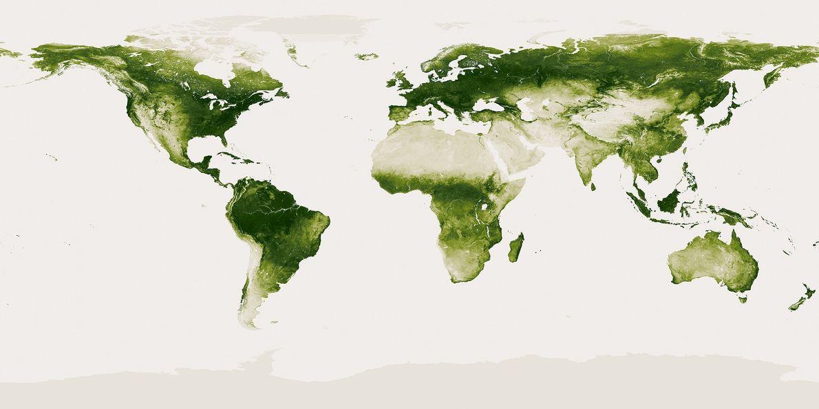 El verde planeta Tierra en esta imagen de satélite en la que se muestra la vegetación …