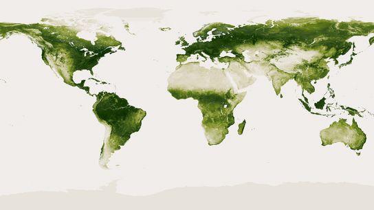 Tierra verde 01