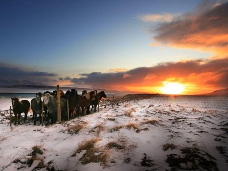Las mejores imágenes de Islandia