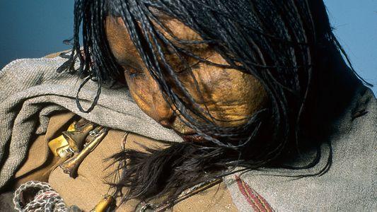 Los niños incas sacrificados ritualmente estaban drogados