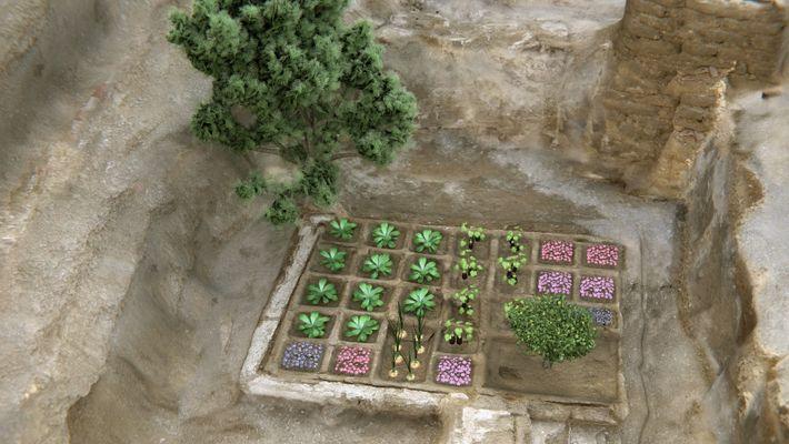 Reconstrucción del jardín