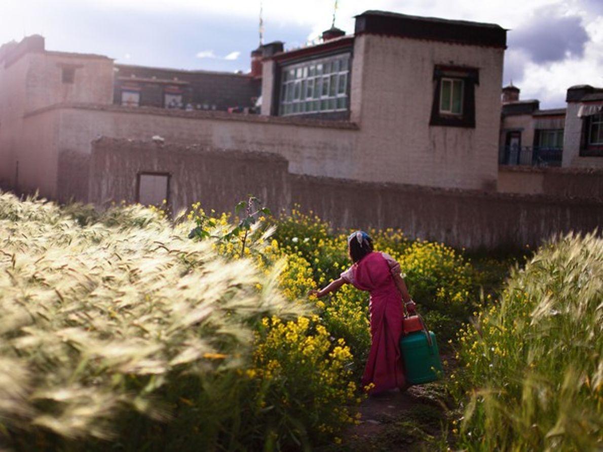 Joven con un balde, Tíbet