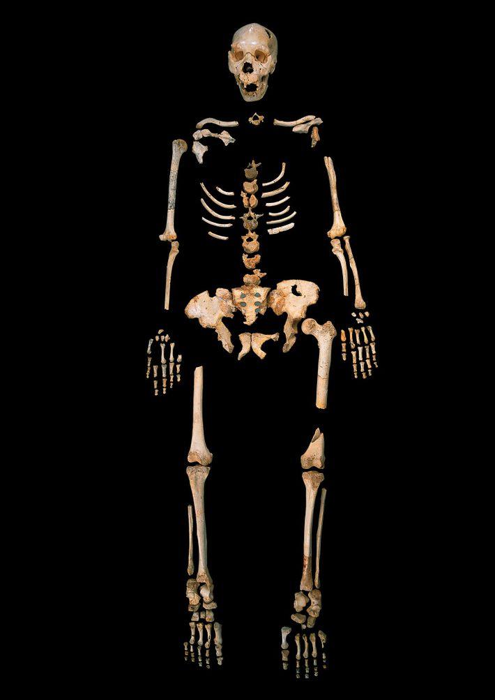 Huesos denisovanos