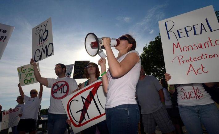 Protesta anti organismos modificados genéticamente