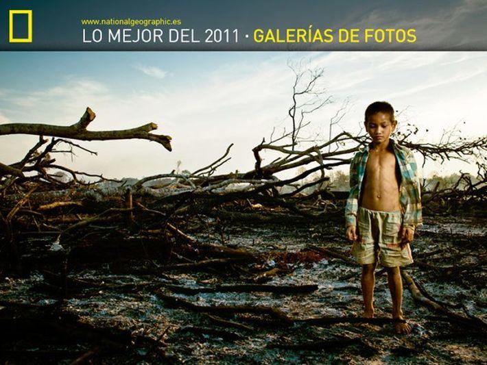 Las Fotogalerías con más éxito de 2011