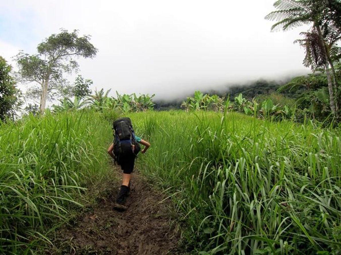 Kokoda TrailOwen Stanley Range, Papua Nueva Guinea