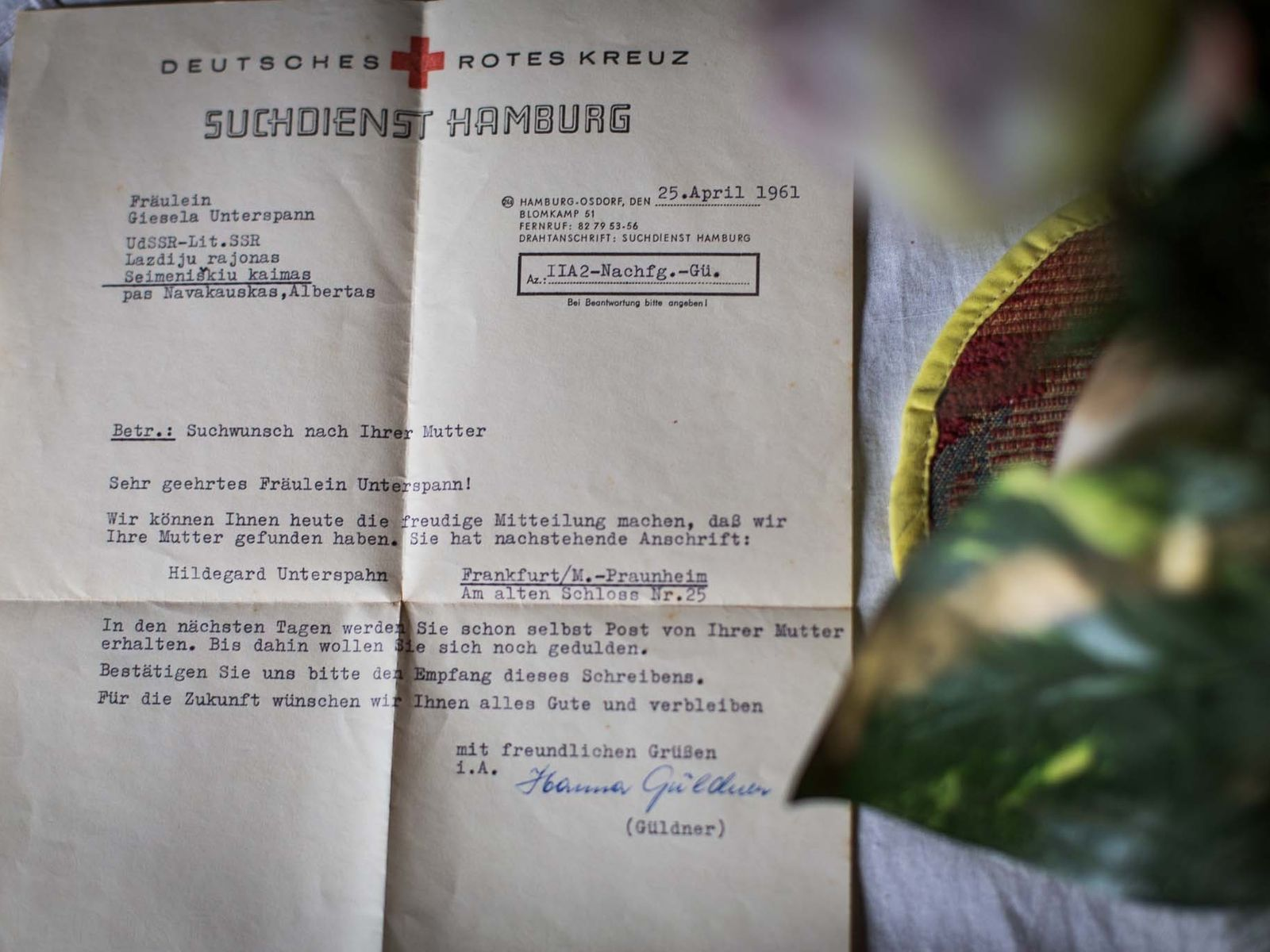 Carta de la Cruz Roja