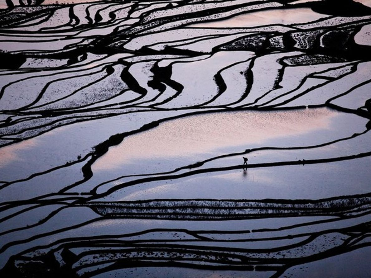 Terrazas de Arroz, China