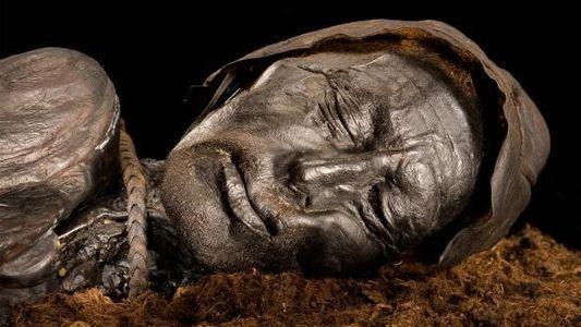 ¿Quiénes fueron las momias de los pantanos? Nuevos descubrimientos sorprendentes
