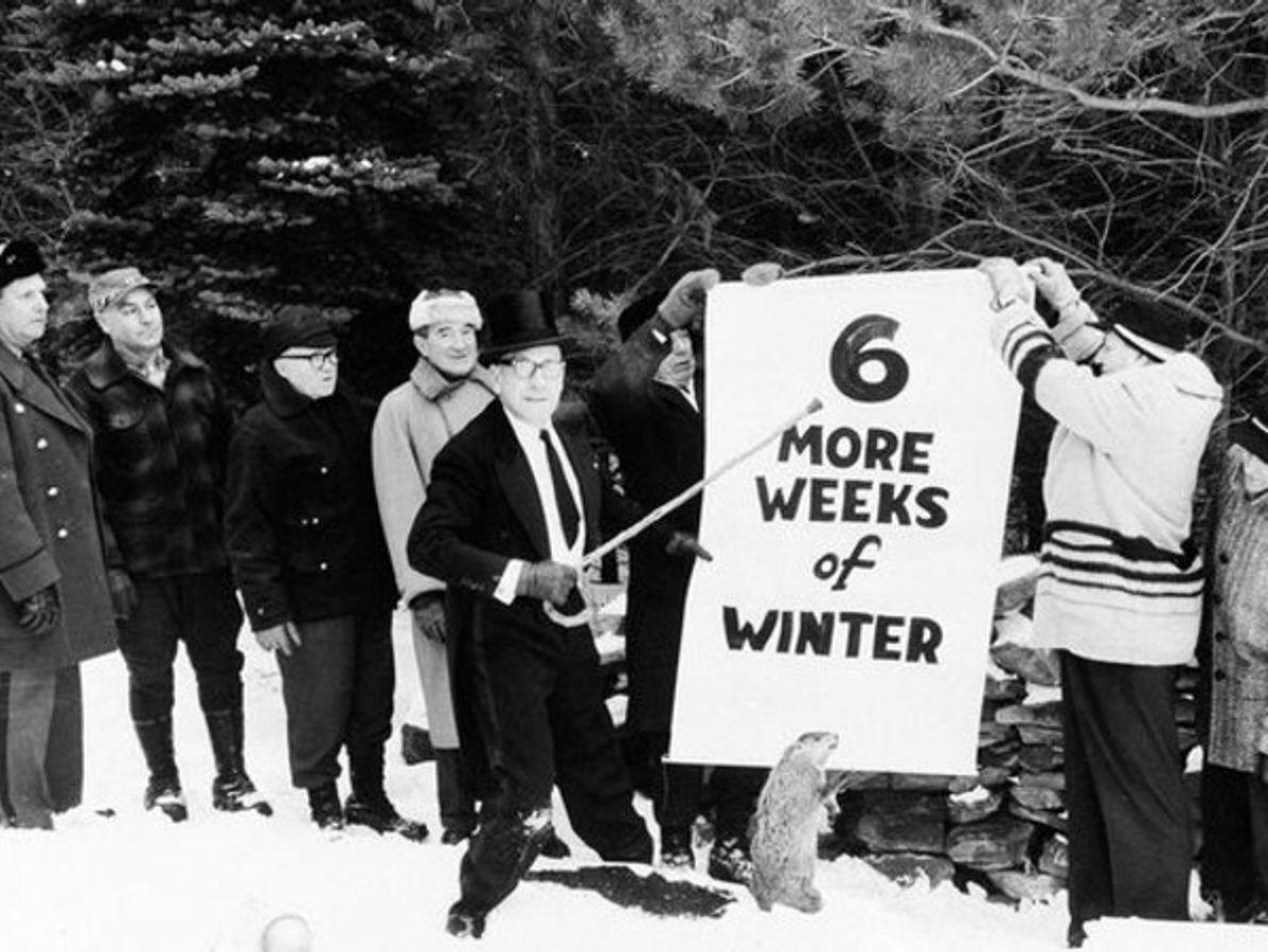 Día de la Marmota 1961