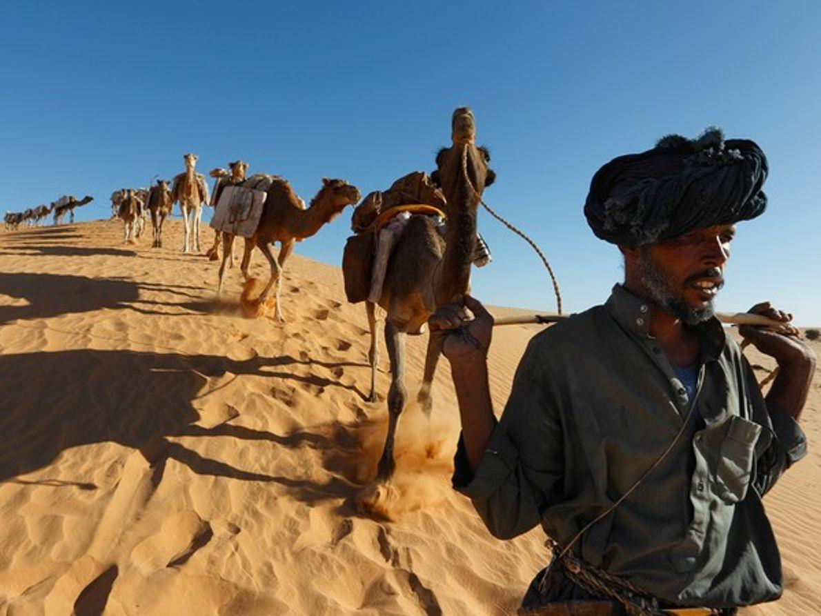 Caravanner y camellos, Malí