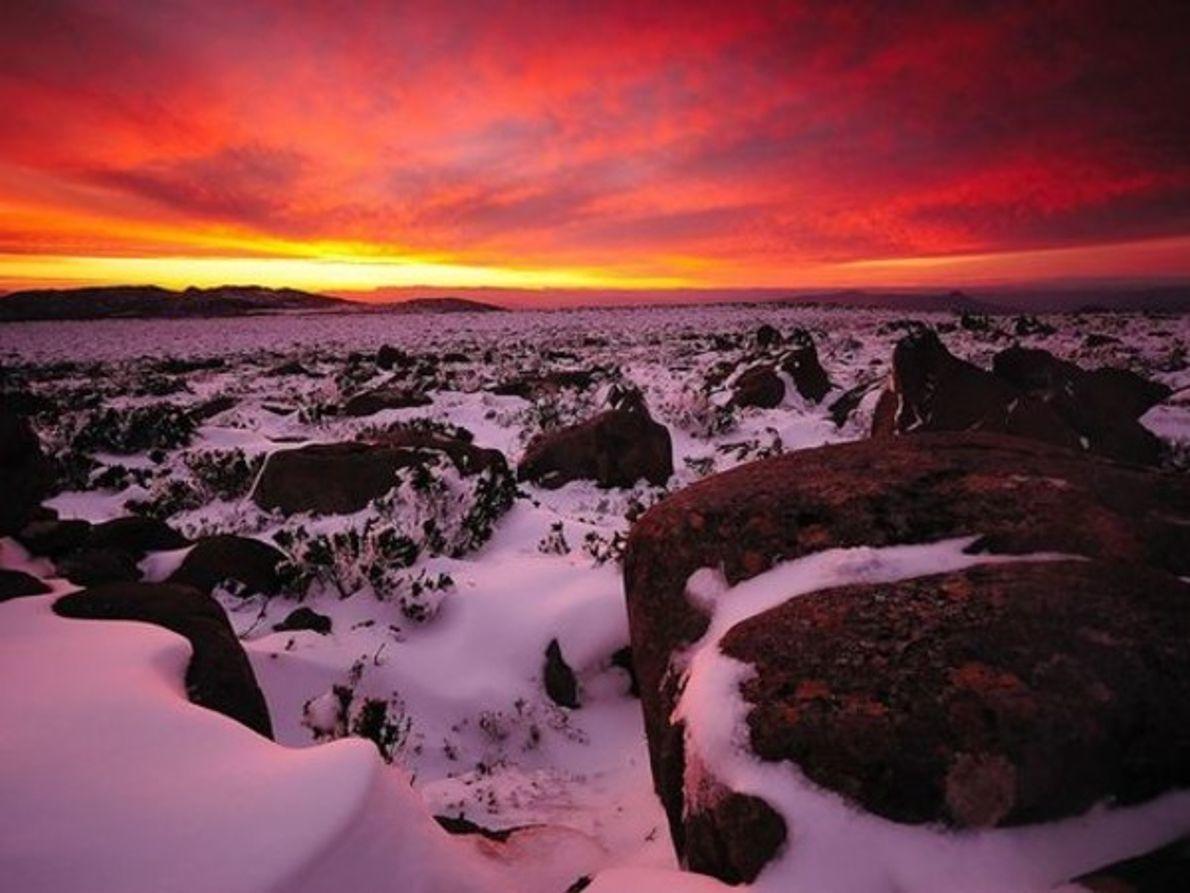 Monte Wellington, Tasmania