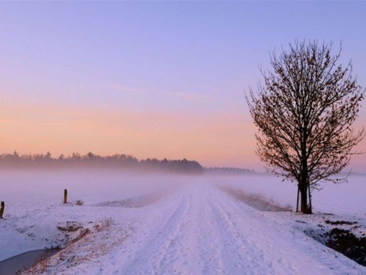 Camino cubierto de nieve, Países Bajos