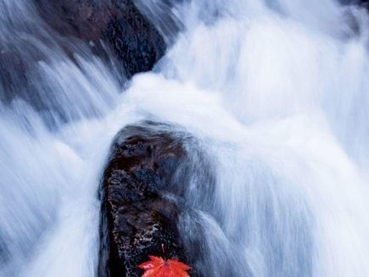 El caudal de agua parece un lienzo en esta fotografía.   Consejo fotográfico: No se necesita un largo …