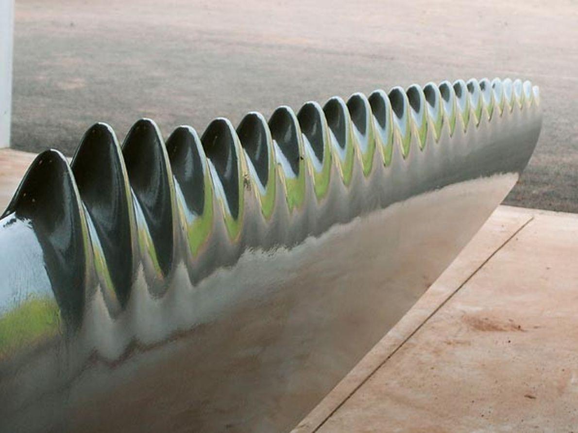 WhalePower: Cuchillas eficientes