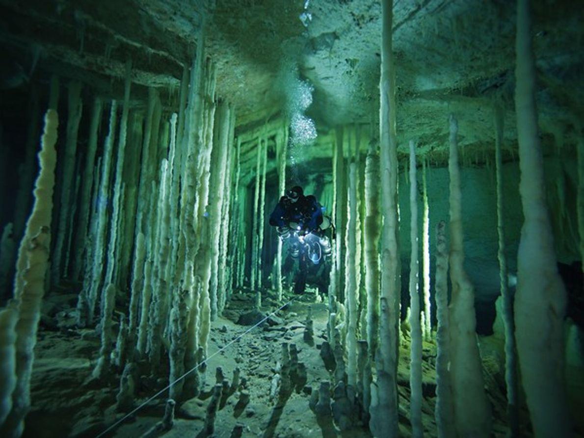 Cueva de Dan, isla Abaco