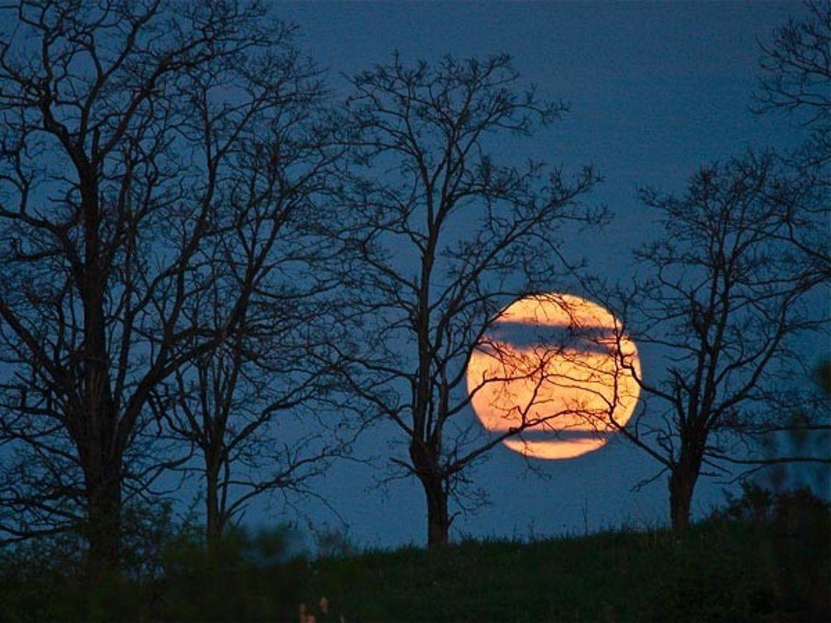 Súper luna en Nueva York