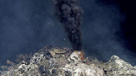 Fuentes hidrotermales pobladas de vida marina