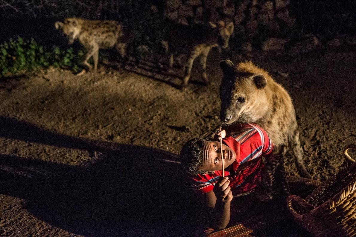 Abbas alimenta a las hienas