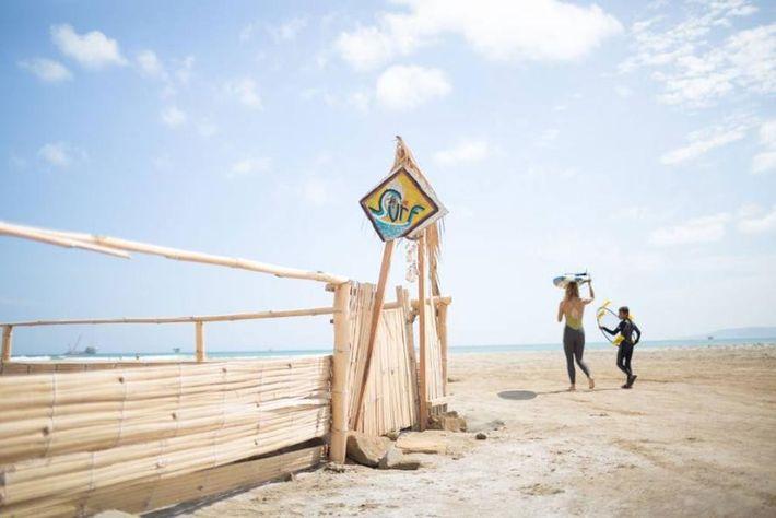 Koch se dirige a la playa