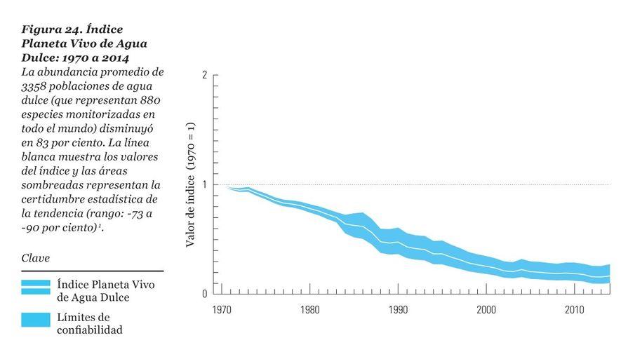 Las especies de agua dulce disminuyen un 83% desde 1970, la mayor extinción de vertebrados a nivel mundial