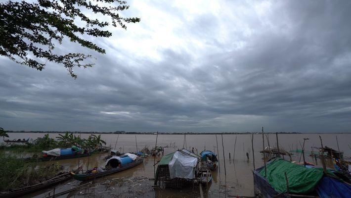 En busca de bebés de pez gato gigante en el Mekong