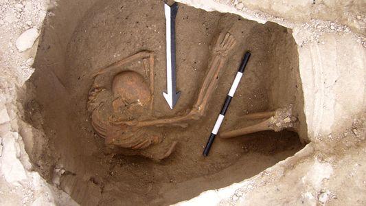 Los descendientes vivos de los cananeos, identificados mediante análisis de ADN de 3.700 años de antigüedad