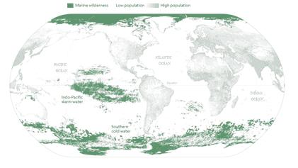 Solo una octava parte del océano se libra del impacto humano