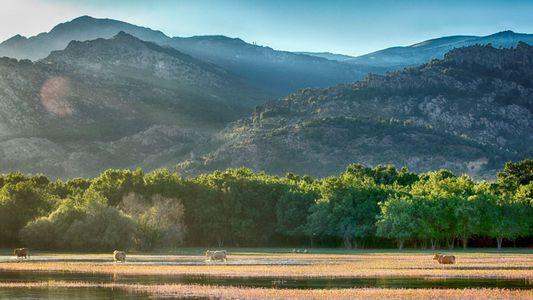 España atesora tres nuevas Reservas de la Biosfera declaradas por la Unesco