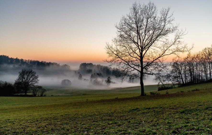 Imagen de archivo de la bruma matutina sobre un prado.