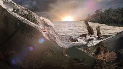 Descubren un cementerio de fósiles del meteorito que asoló la Tierra en la última gran extinción