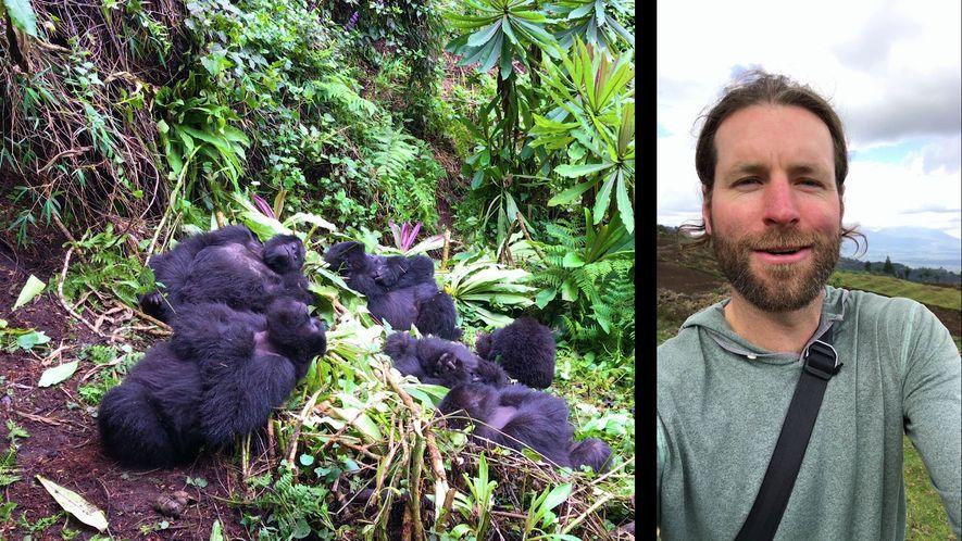 Buscando gorilas con Ronan Donovan.