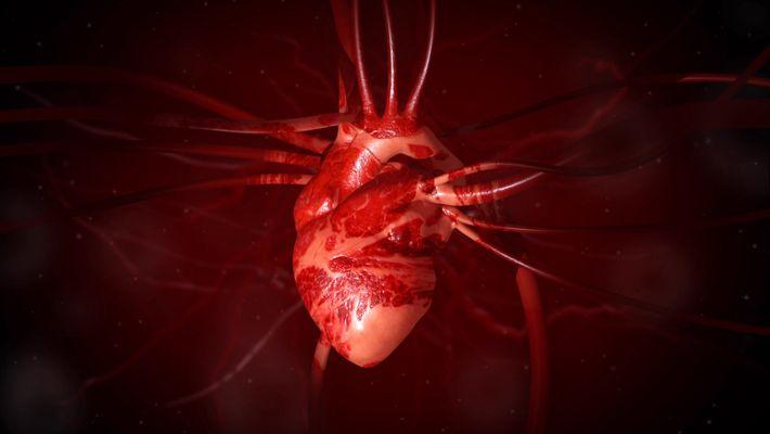 Corazón 101