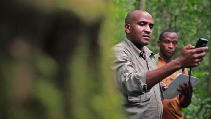 Becas National Geographic- Explora tus límites y aventúrate a cambiar el mundo