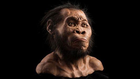¿Convivió este misterioso hombre-simio con nuestros antepasados?