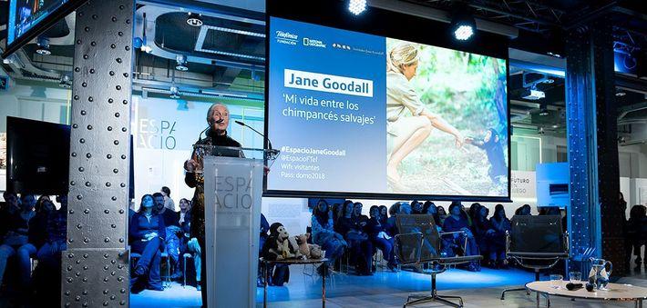 Jane Goodall entrevista 130 años National Geographic