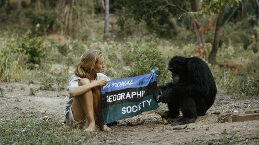 Día de las especies en peligro de extinción: Jane Goodall