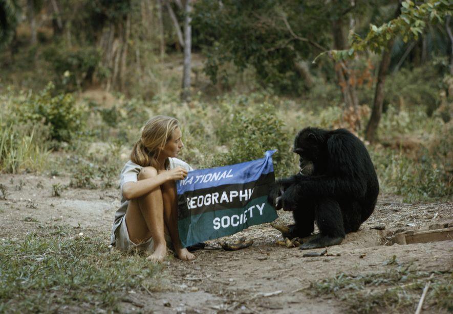 Día de las especies en peligro de extinción