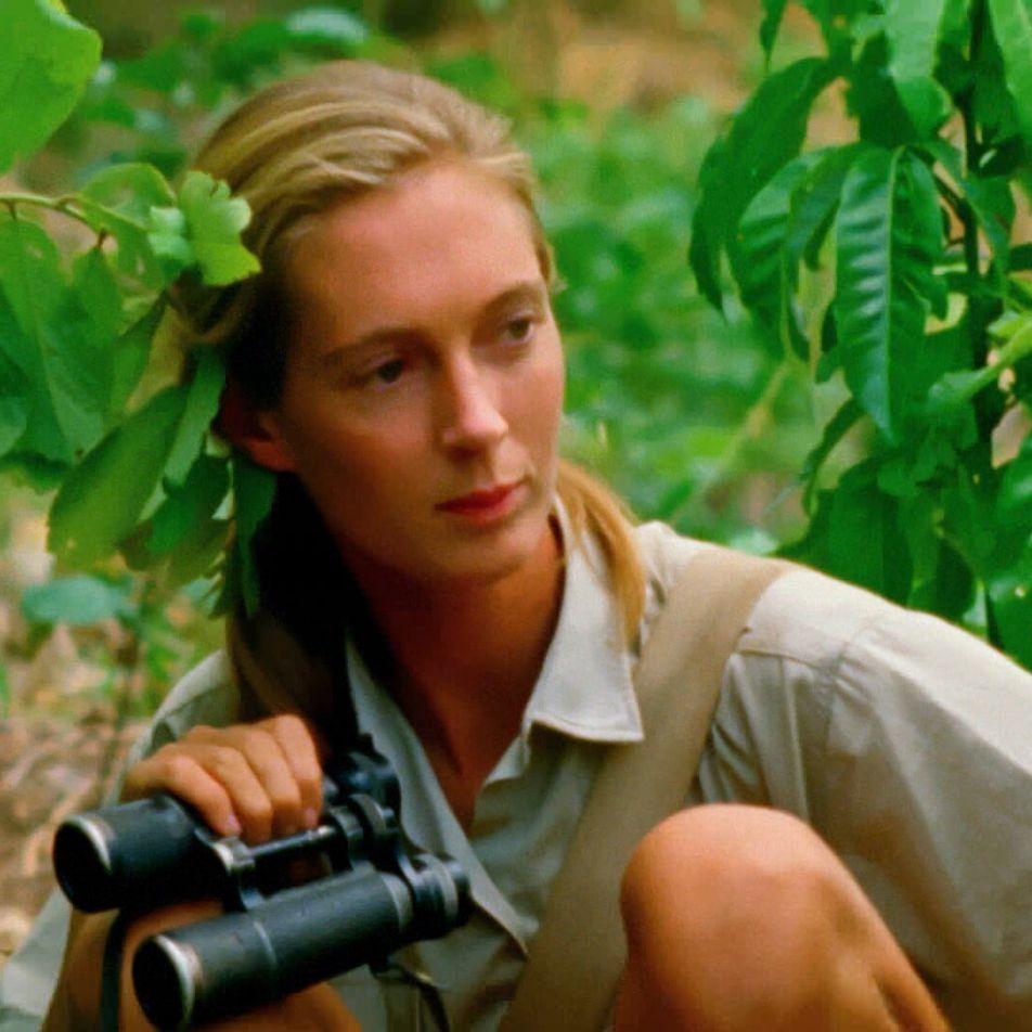 Jane Goodall: cómo lograr un cambio