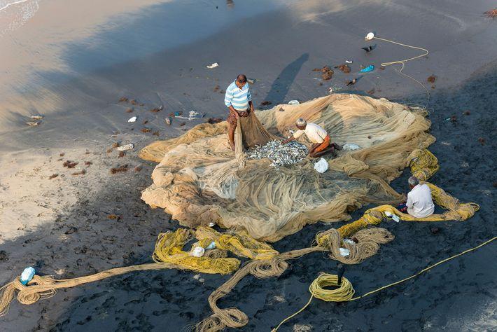 Los pescadores inspeccionan sus redes