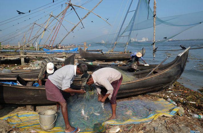 Los pescadores de Kochi