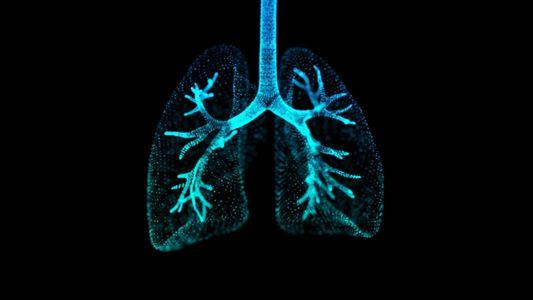 Pulmones 101
