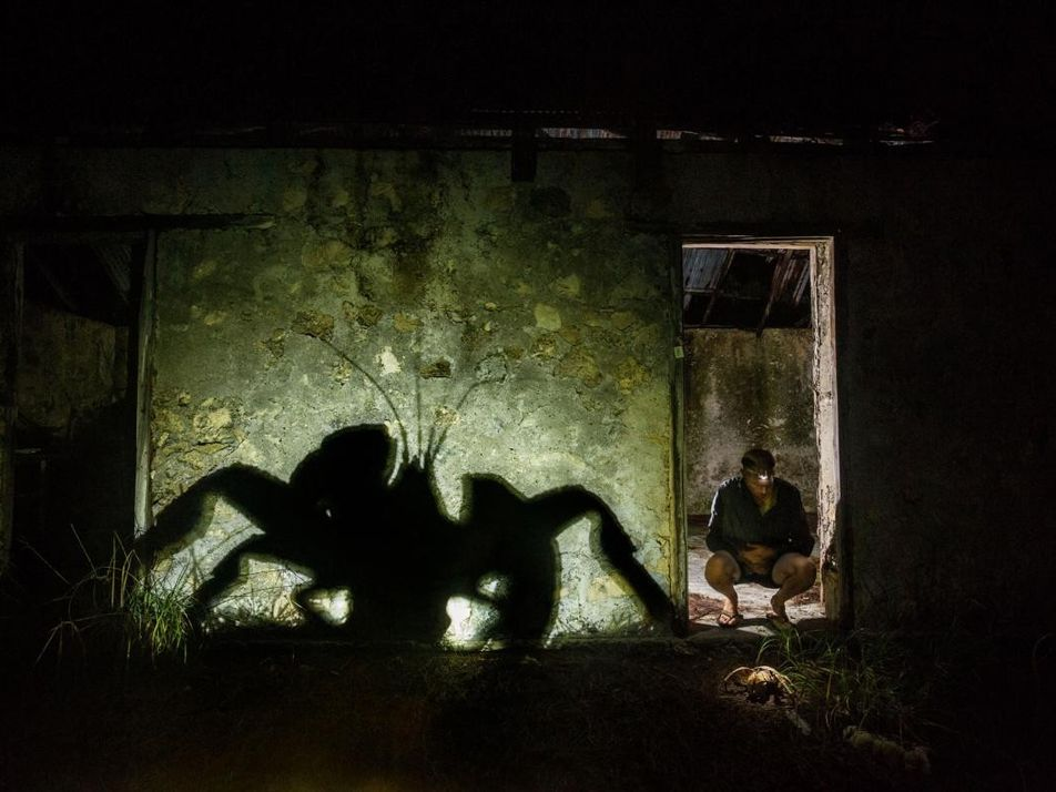 Crabzilla: fotografiando un cangrejo monstruoso
