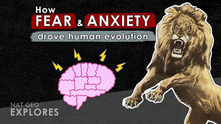 El papel del miedo y la ansiedad en la evolución humana