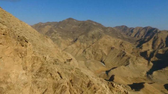 Impresionantes imágenes de un rebaño de cabras montesas escalando a toda velocidad