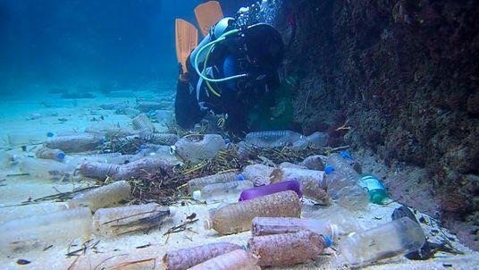 Te mostramos la cantidad total de desechos plásticos que contaminan nuestro planeta.