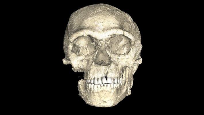 ¿Podrían ser estos los fósiles más antiguos de humanos modernos?