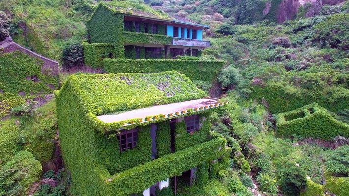 Explora una aldea pesquera abandonada de China dominada por la vegetación