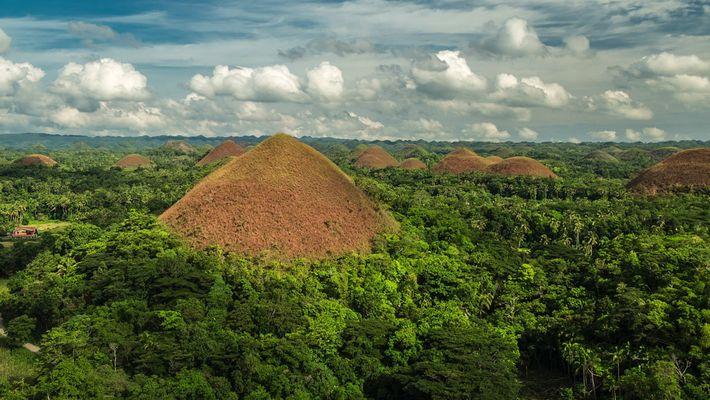 Visita las colinas de Chocolate de las Filipinas