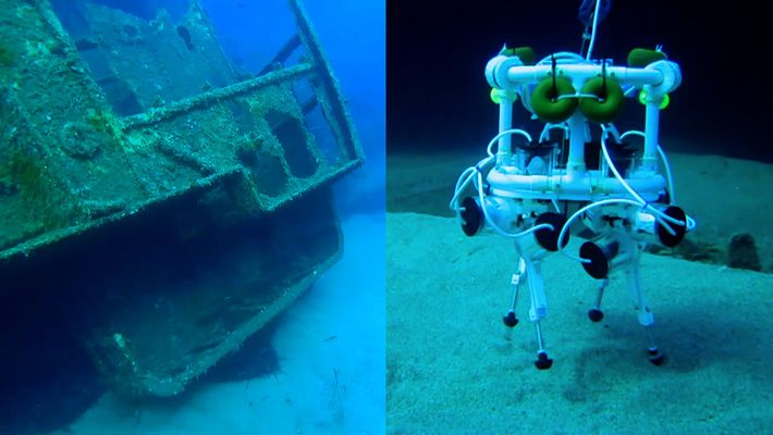 """Este """"perro robot"""" podría convertirse en un explorador oceánico"""